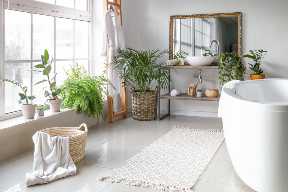 Pflanzen für das Badezimmer: Das sind die 13 besten ...